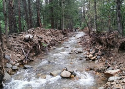 Wall Street Creek Restoration