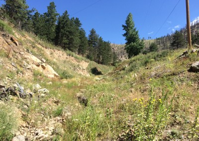 Lower Ingram Gulch Implementation